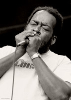 James Cotton Monterey 1981